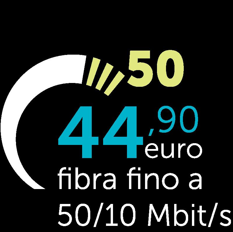 yc_50_b